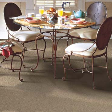 Horizon Carpet | Brockport, NY